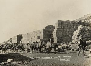 """With the Camera at Anzac"" - Supply reserve & Indian mule transport - Anzac Beach"