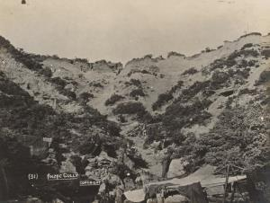 """With the Camera at Anzac"" - Anzac Gully"